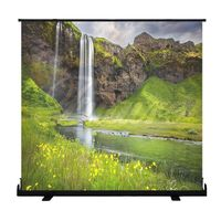 Indoor Outdoor Portable Movie Screen 100 Inch 16:9 Home Cinema Projector Screen Roll Easily, PVC Fab