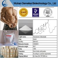 Hot Sell Testosterone Undecanoate powder steriods for gain muscle 5949-44-0