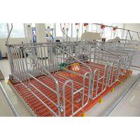 Most Popular Best Selling pregnant pig pregnancy gestation crates farm