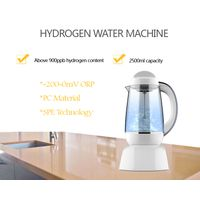 Hydrogen Water Machine With PEM Technology to Electrolysis Of Water By Water Electrolysis Machine