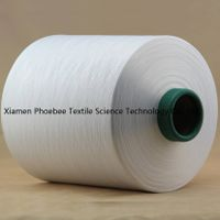 100% Polyester DTY Yarn with 300d/96f/2 raw white Him AA Grade