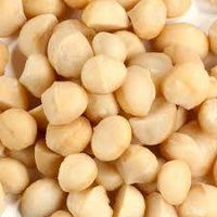 macadamia thumbnail image
