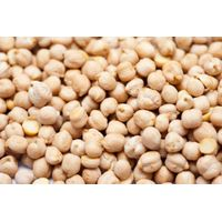 chickpeas,Cloves,Walnuts,Brazil Nuts,ginger,garlic thumbnail image