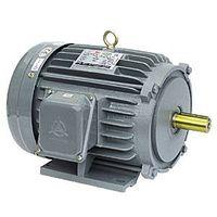 Low voltage motor