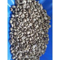 VIETNAM ROBUSTA COFFEE- ARABICA COFFEE - ROASTED COFFEE- INSTANT COFFEE COFFEE POWDER thumbnail image