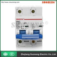 BEST price 100A 2 pole circuit breaker