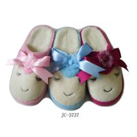 Indoor Slippers thumbnail image