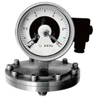 Dry Type Threaded Diaphragm Micro Pressure Gauge with Electrical Contacts #DDS1160 (S)+ECM