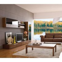 Living room furniture sets , TV stands , display cabinet , coffee table thumbnail image