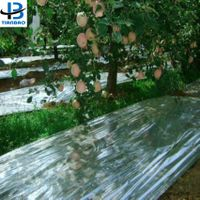Metallized CPP Film Reflective Film For Apple Tree thumbnail image