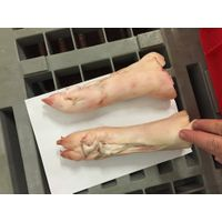 Frozen pork feet,pork hind feet,pig feet,pig hind feet thumbnail image