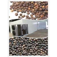 black pepper dryer|black pepper drying machine