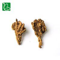 Coptis chinensis rizoma traditional Chinese medicine herbs Rhizoma Coptidis healthcare product Huang thumbnail image