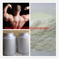 Trenbolone Enanthate / Tren Enanthate Anabolic Trenbolone Steroid For Bodybuilding