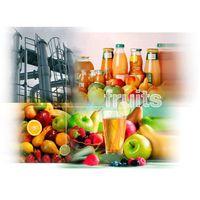 Fruit processing Plant, fruit plant, fruit juice processing machine, apple/pear/peach/grapes/banana/