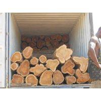 A grade okoume wood logs for sale. thumbnail image