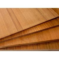 Poplar, Hardwood, Hardwood Combi, Birch, eucalyptus,Teak veneer Plywood for sale