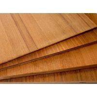 Poplar, Hardwood, Hardwood Combi, Birch, eucalyptus,Teak veneer Plywood for sale