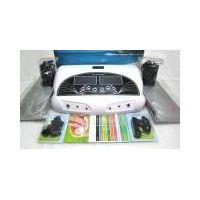 Dual Ionizer Detox Equipment