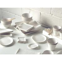 Disposable Tableware Products Making Machine Manufacturer thumbnail image