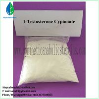 Effective Anabolic Steroids Testosterone Cypionate/Cap (CAS: 58-20-8) for Muscle Building paypal Le thumbnail image