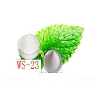WS23 Cooling Agent