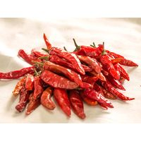 High Quality Wholesale Dry Hot Red Chilli Pepper thumbnail image