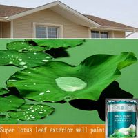 Super lotus leaf exterior wall paint