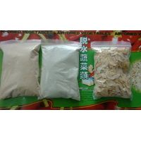dehydrated garlic powder manufacturer in China thumbnail image