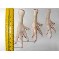 PURCHSING AGENT FOR CHICKEN PAW thumbnail image