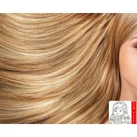Russian Bleached Weft Hair Extension thumbnail image
