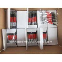 Customize Plastic Ball Pen