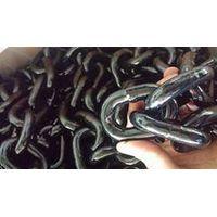 G80 Alloy Steel Chain