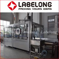 10L Large Bottle Mineral Water Filling Machines