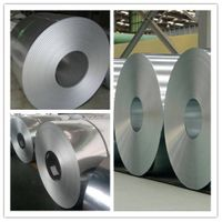 Top Level Galvalume Steel Coil/Sheet