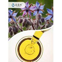 Organic borage seed oil thumbnail image