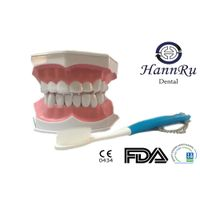 Dental model PST-02 Drilling Practice Model (EZ type) - Hann Ru