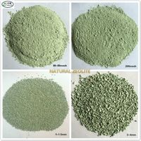 100mesh, 1-2mm, 2-4mm Natural zeolite for horticulture, filter, water treatment etc.