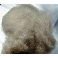 100% Dehaired Brown Cashmere Fiber thumbnail image