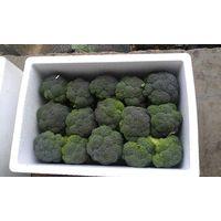 2015 fresh broccoli agricultural organic vegetables &fruits