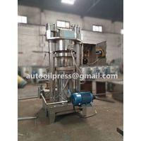Factory price hydraulic automatic olive sesame walnut oil press machine