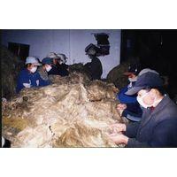 Hackled flax fiber thumbnail image