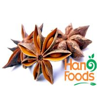 New Promotion Wholesale natural star anise for sale