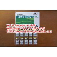 Supply Top HYGETROPIN HGH 1000mcg/1.0mg 10vials/kit Somatropin best price (Wickr:jesseechem890) thumbnail image