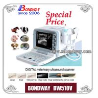 Digital Veterinary Ultrasound Scanner (BW510V)