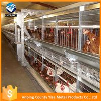 Hebei high quality type-a chicken cage system