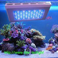 NEW 120 watt aquarium led light dimmable 3 watt led reef tank lighting 1:1 led freshwater aquarium l