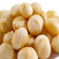 Cheap macadamia nuts for sale in bulk thumbnail image