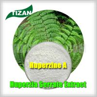 Huperzia Serrate Extract