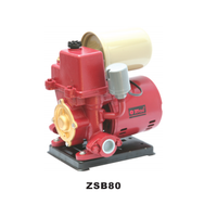 ZSB automatic peripheral pumps